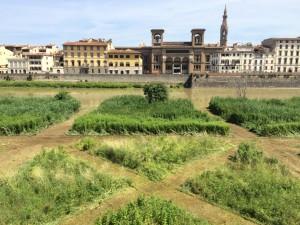 TERZO GIARDINO Un'opera d'arte di  10000 mq, un parco pubblico stagionale sulla riva dell'Arno