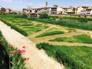 Il giardino del fiume. Alla scoperta del Terzo Giardino