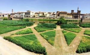 """Rinasce il """"Terzo Giardino"""": un intervento di arte pubblica restituisce un'area verde alla città"""